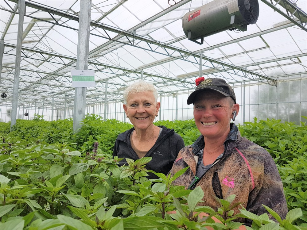 Scarborough Fare Applies KAIZEN™ in Horticulture